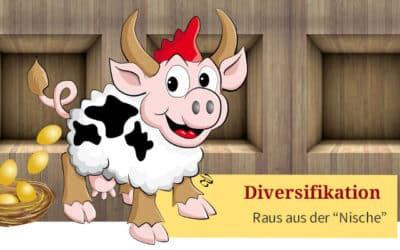 """Diversifikation – raus aus der """"Nische"""", aber richtig!"""